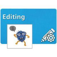 Bernina Toolbox Editing